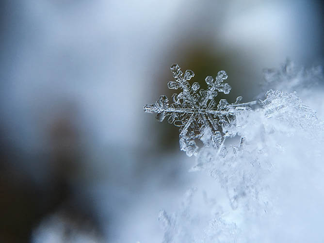 winter-SCA-community-living